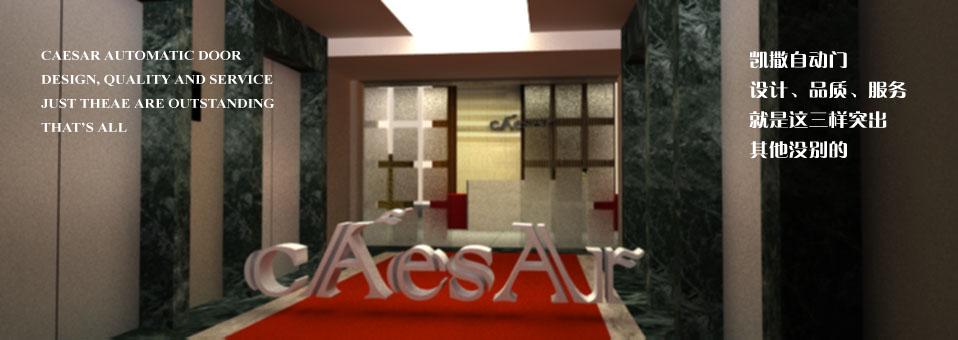 凯撒CS-AC-ATD 门禁刷卡自动门
