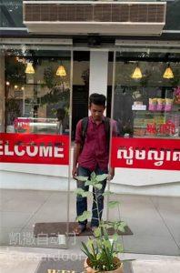 柬埔寨商场自动平移门安装案例